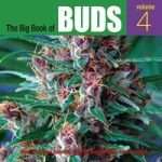 The Big Book of Buds Volume 4