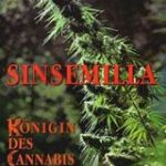 Sinsemilla-Königin des Cannabis