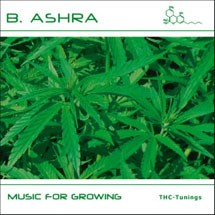 B. Ashra - Music for Growing