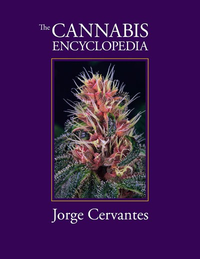 The Cannabis Encyclopedia SC