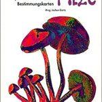 Psychoaktive Pilze