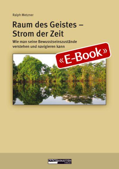 Raum des Geistes - Strom der Zeit (E-Book)
